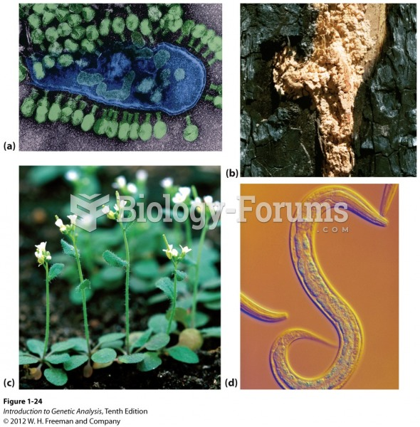 Some organisms used as models in genetic research