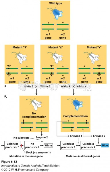 The molecular basis of genetic complementation
