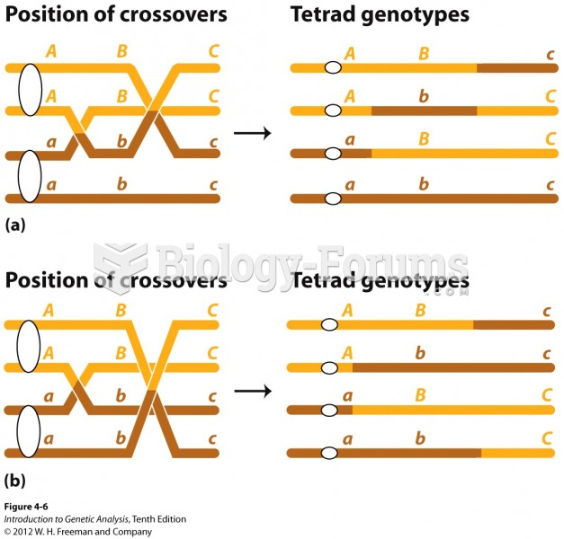 Multiple crossovers can include more than two chromatids