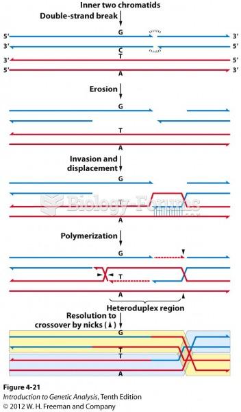 Crossing over creates heteroduplex DNA