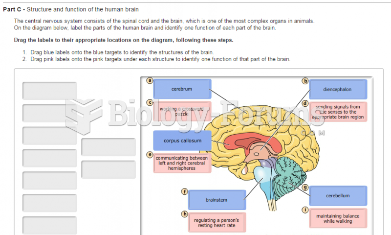 Part c structure and function of the human brain biology previous ccuart Images