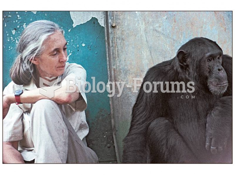 Jane Goodall pioneered the modern approach to studying primates in the wild, involving close-up obse