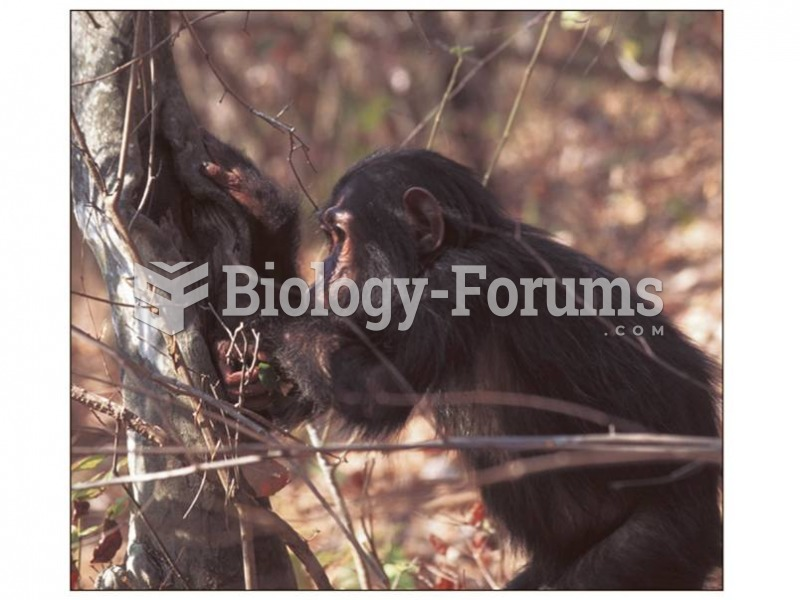 "Jane Goodall first observed Gombe chimpanzees chewing leaves, then dipping the chewed-up ""wadge"" int"