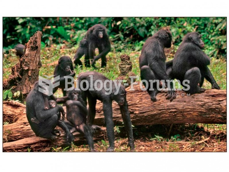 Bonobo females form close alliances, maintained through sex, but these alliances are lacking in chim