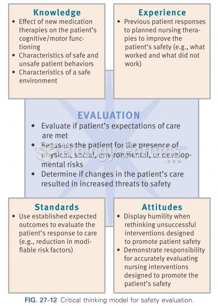 Critical thinking model for safety evaluation