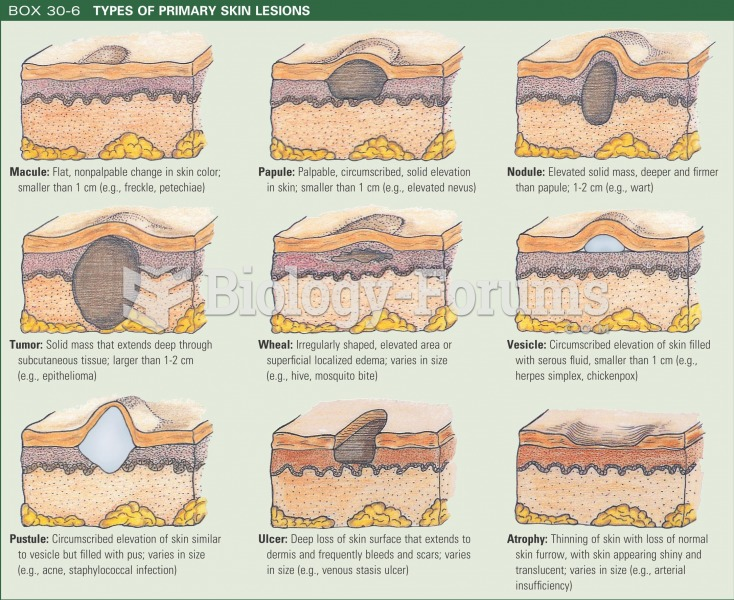 Types of primary skin lesions