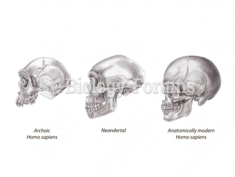 Variations on a theme: archaic Homo sapiens, Neandertal, and anatomically modern Homo sapiens skulls