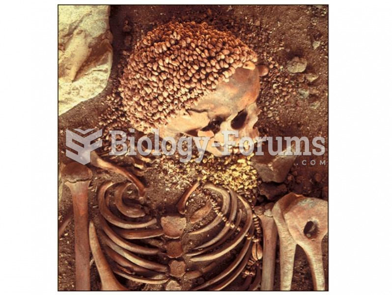 Anatomically modern humans left archaeological clues, including evidence of burials, which indicate