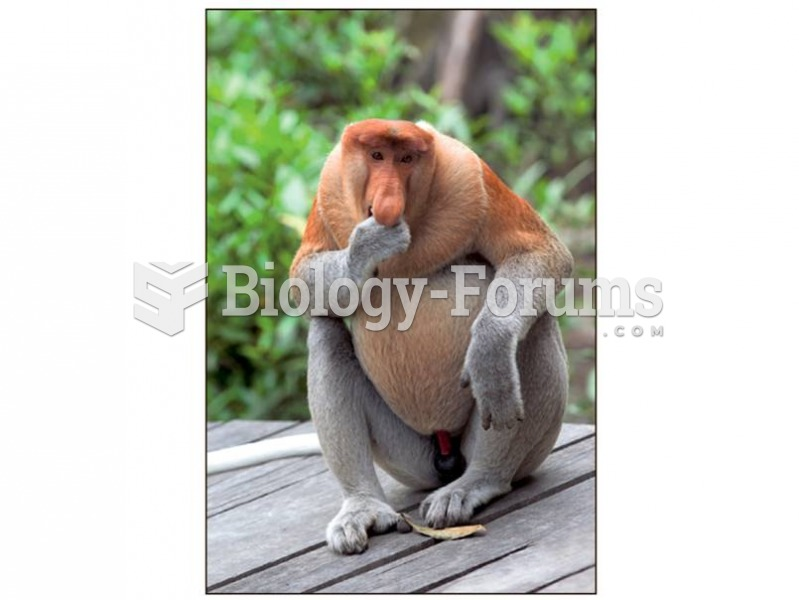 The proboscis monkey demonstrates that large gut size contributes to a lower EQ.