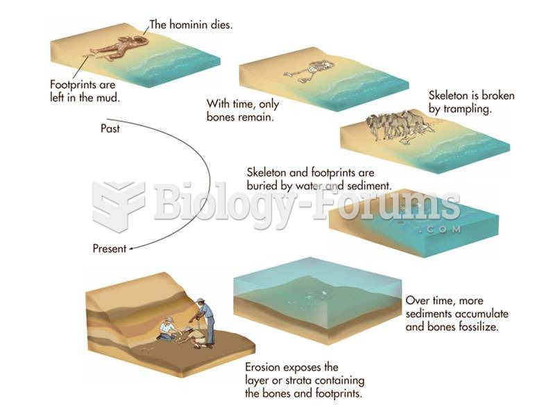 Fossils are formed after an animal dies, decomposes, and is covered in sediment. Minerals in ground