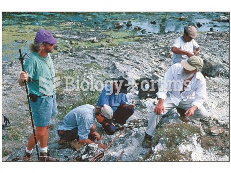 Team of geologists collecting samples for paleomagnetic analysis at Sangiran, Java.