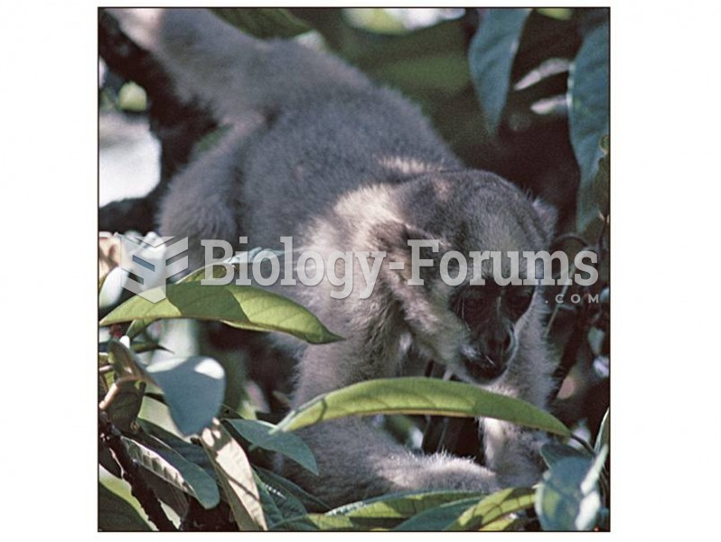 Like all animals, primates must balance their calories expended searching for food with calories, pr