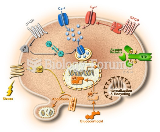 Understanding cells in terms of their molecular components.