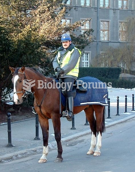 A mounted police officer in Poland