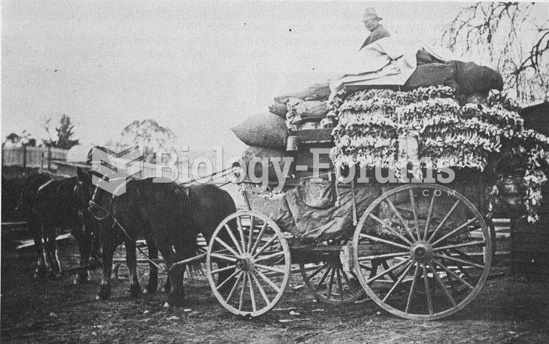 An old wooden cart, piled with rabbit skins, in New South Wales, Australia