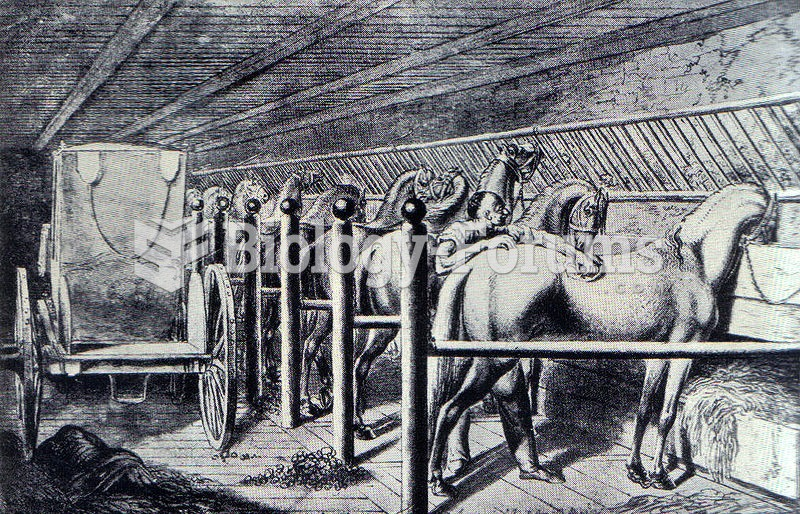 A set of tie stalls in an 18th century stable