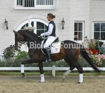 Effective communication and harmony between horse and rider are among the goals of proper training