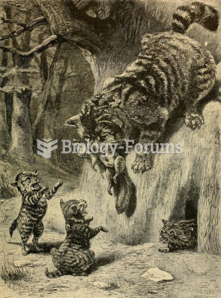 European wildcat feeding its kittens, as illustrated in Brehm's Life of Animals