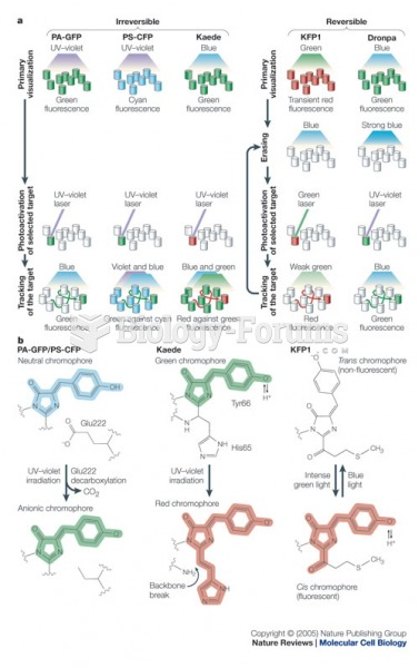Spectral and photochemical properties of photoactivatable fluorescent proteins.