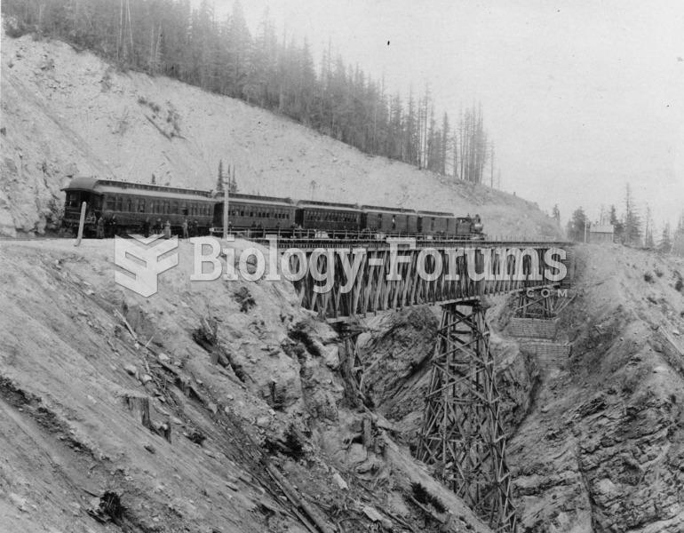 A passenger train crosses Stony Creek Bridge in the Rocky Mountains in 1878. Railroads were importan