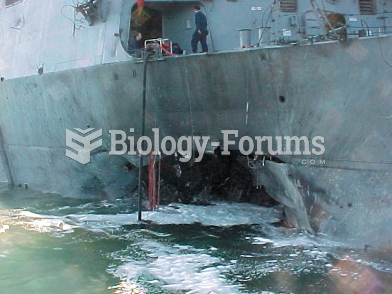 The gaping hole in the destroyer USS Cole, in the port of Aden, Yemen, was the work of suicide bombe