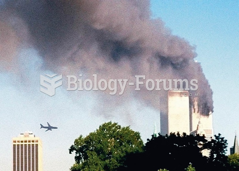 A second jetliner approaches the south tower of the World Trade Center on September 11, 2001. The no