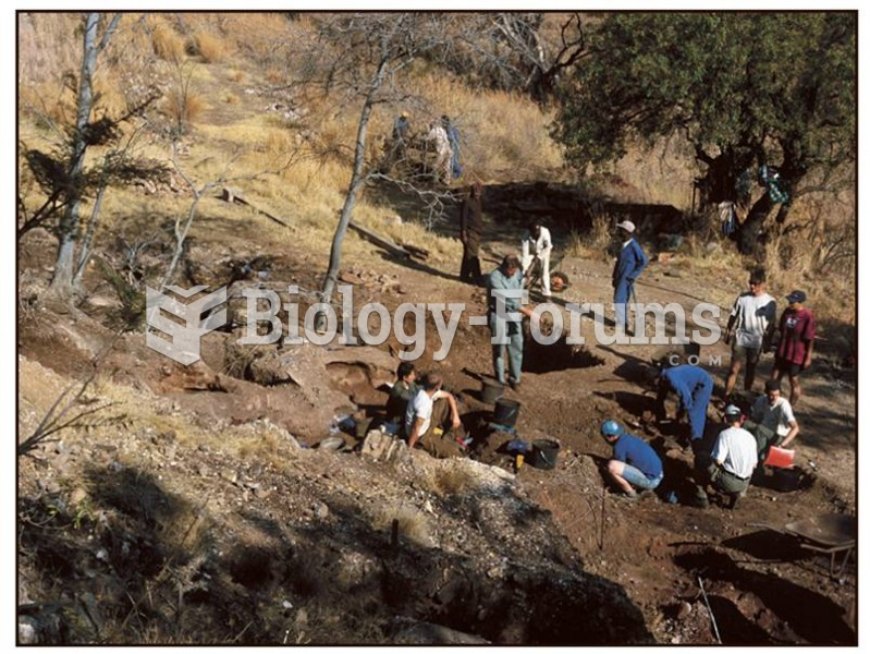 The site of Gladysvale in South Africa is excavated for Australopithecus remains.