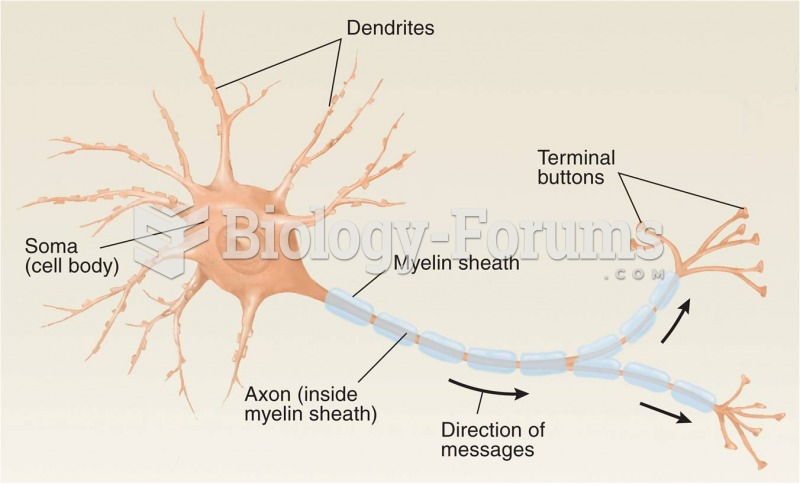 Multipolar Neurons: Location, Structure, and Functions