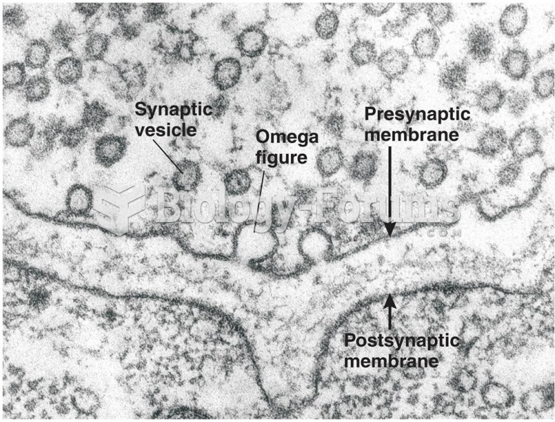 Cross Section of a Synapse