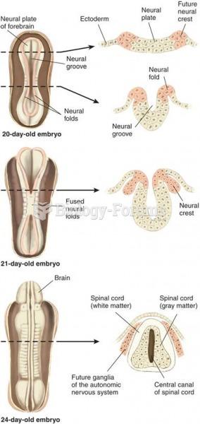 Neural Plate Development