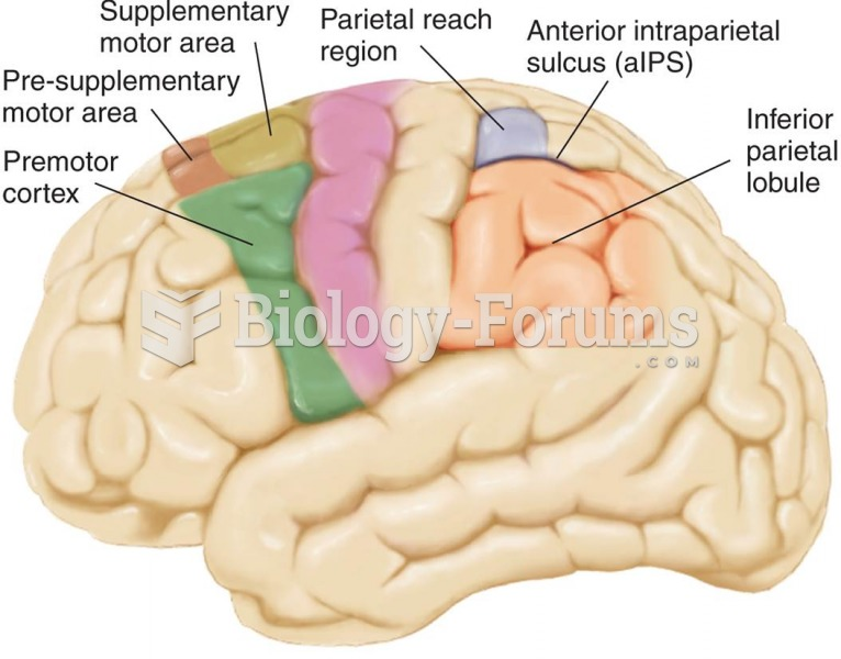 Important Motor Regions of the Human Brain