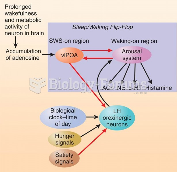 Adenosine, Time of Day, and Hunger
