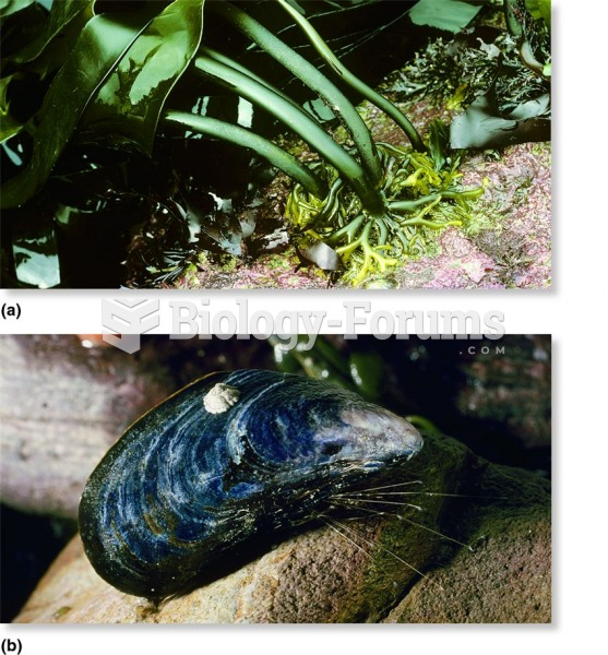 Animals and plants of the intertidal zone adhering to their rocky surface.