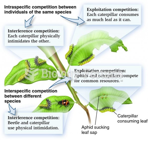 The different types of competition in nature.
