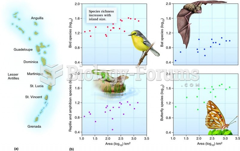 Species richness increases with island size.