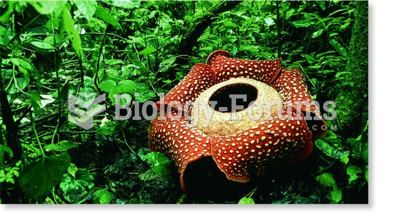 Rafflesia arnoldii, the world's biggest flower, lives as a parasite in Indonesian rain forests.
