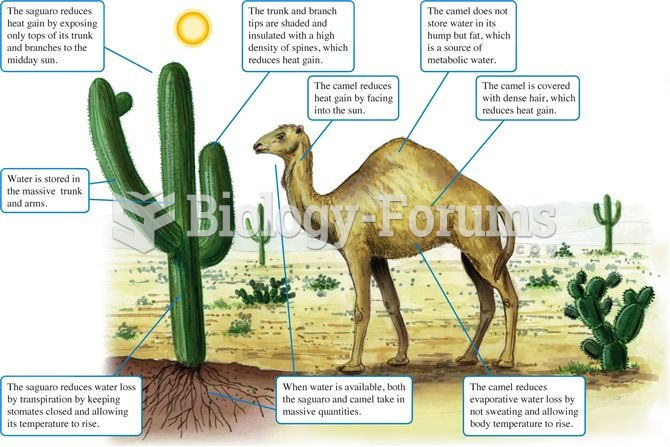 Dissimilar organisms with similar approaches to desert living.