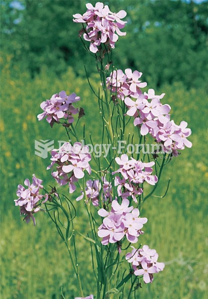 The wild radish, Raphanus sativus, has become a model for studying the mating behaviour of plants.