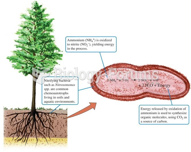 Ammonium as an energy source for chemoautotrophic bacteria in soil.