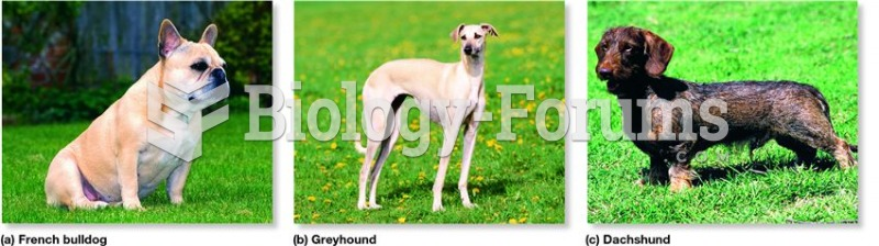Some breeds of dogs that have been obtained by selective breeding.