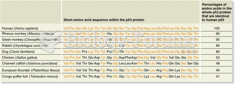 An example of genetic homology: a comparison of a short amino acid sequence within the p53 protein f