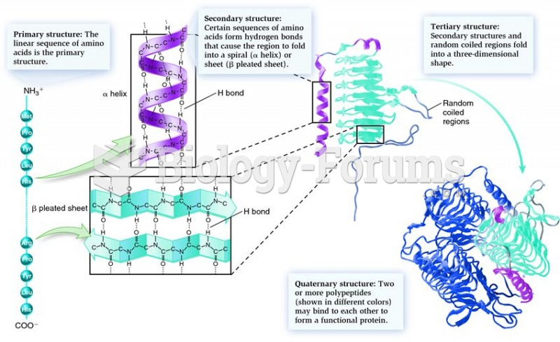 The hierarchy of forces governing protein structure.