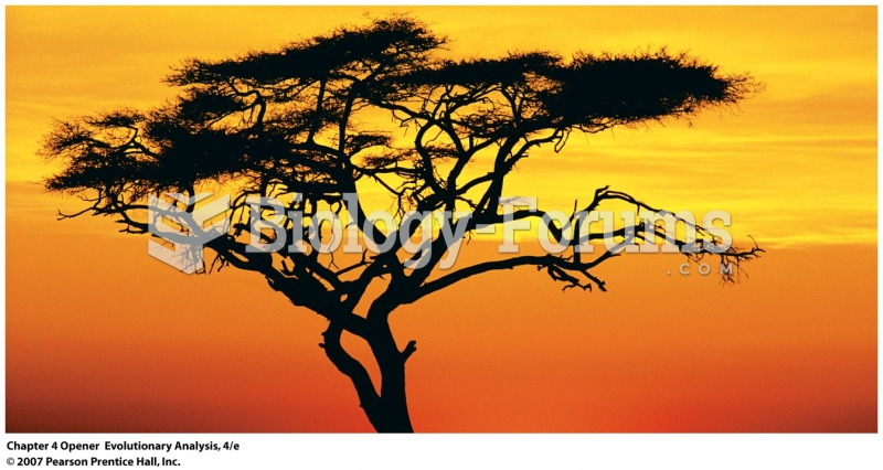 This solitary tree is an appropriate symbol for the tree of life—the evolutionary t