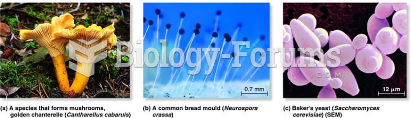 Examples of fungi.
