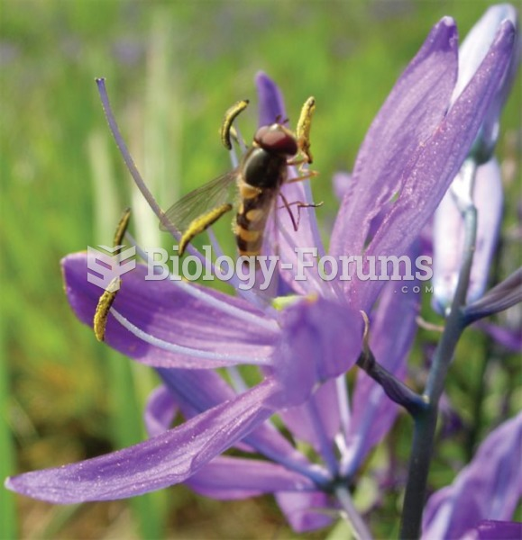 Mutualisms, such as those that occur among plants and pollinators, generally involve large numbers o