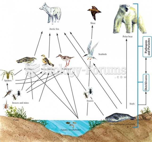 Simple food web of an Arctic island. NOTE: The indication of detritivores and pathogens was not part