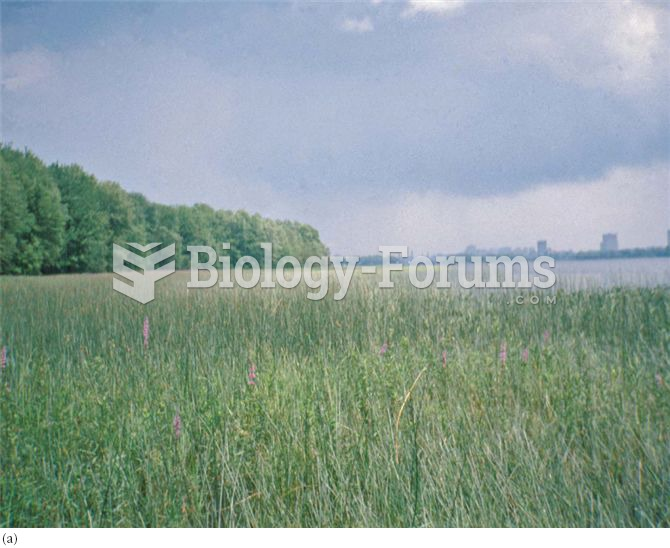 Areas of differing productivity and diversity in a wetland. (a) Typha dominates core habitats, while