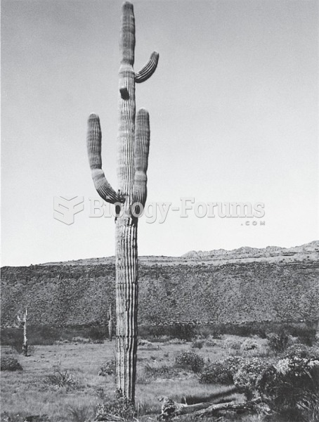 Details of plant population biology from repeat photography: (a) saguaro cactus in MacDougal Crater,