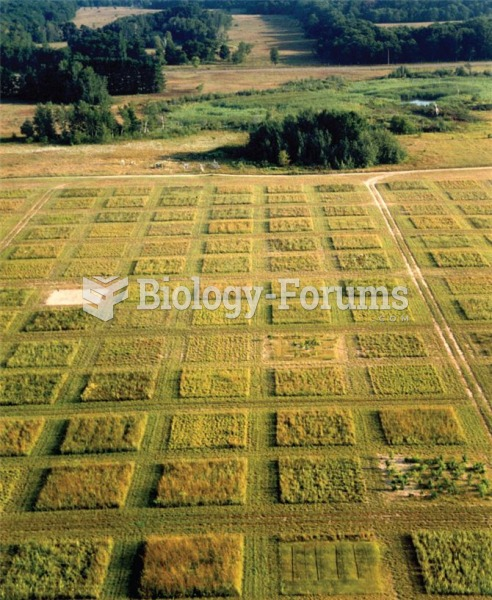 Aerial and close-up views of a large biodiversity experiment in Cedar Creek, Minnesota. Each of the