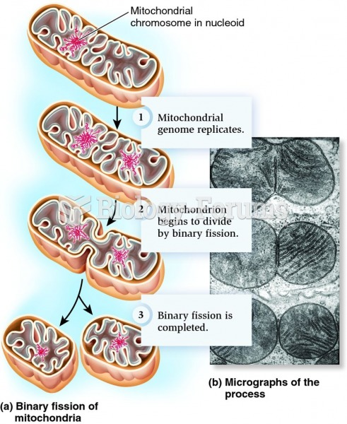 Division of mitochondria by binary fission